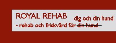Royal rehab för både två och fyrbenta