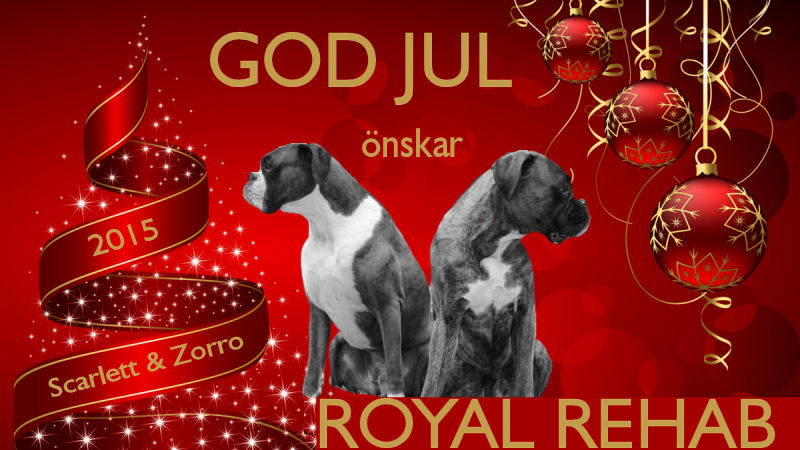 GOD JUL 2015 önskar Royal Rehab