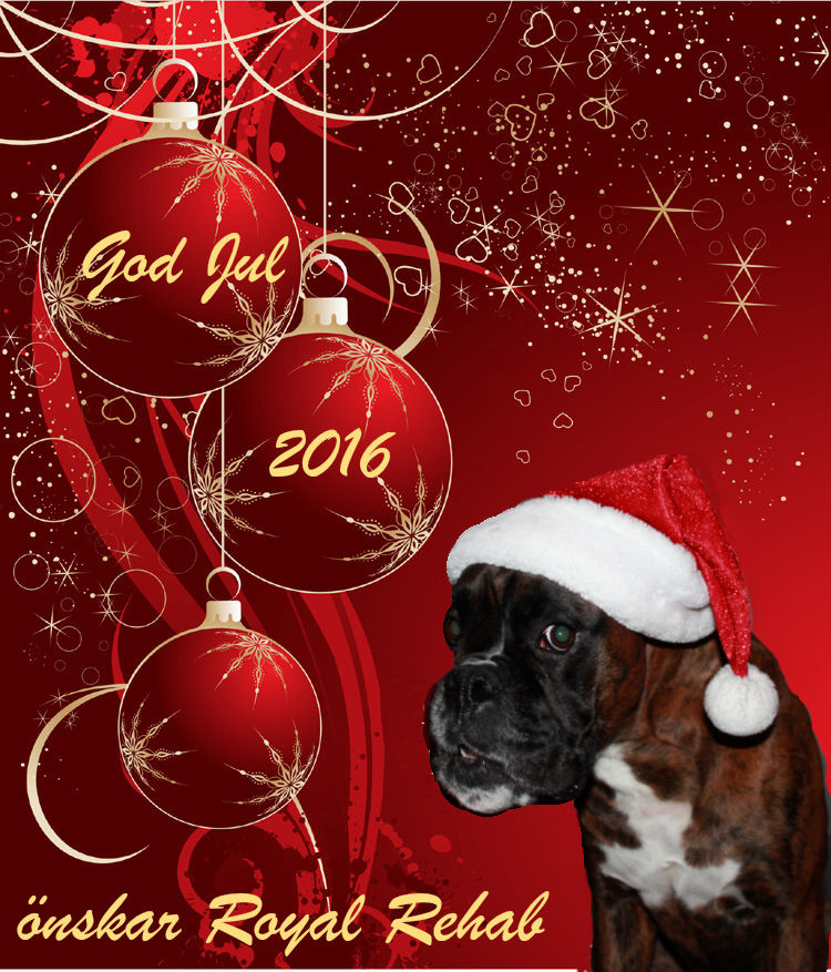 merry-christmas_2016