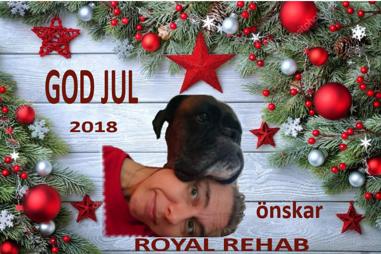 Royal rehab - god jul