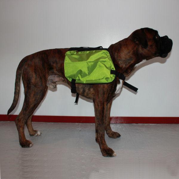 Klövjeväska för träning och friskvård